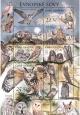 Ochrana přírody - Sovy - aršík - č. 853-856 - za nominál