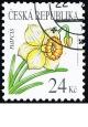 Krása květů - narcis - č. 466 - razítkovaná