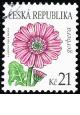 Krása květů - gerbera - č. 550 - razítkovaná