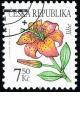 Krása květů - lilie - razítkovaná - č. 423