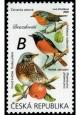 Zpěvní ptáci v našem okolí - Drozdovití - č. 1077 - za nominál