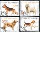 Chovatelství - psi - razítkovaná - č. 296-299