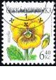 Krása květů - maceška - razítkovaná - č. 330