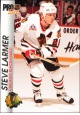 Hokejové karty Pro Set 1992-93 - Steve Larmer - 31