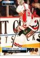 Hokejové karty Pro Set 1992-93 - Jarrod Skalde - 231