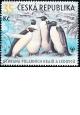 Ochrana polárních krajů a ledovců - razítkovaná známka - č. 589